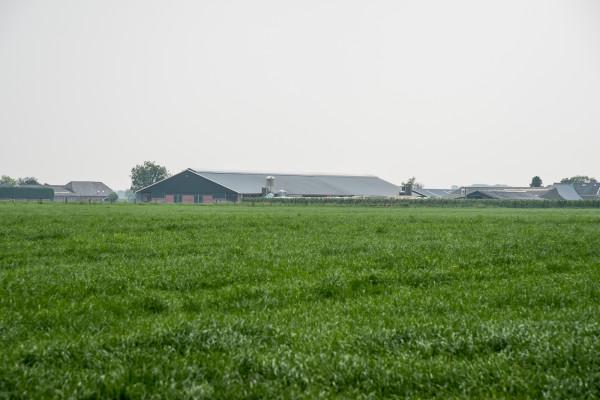 Bedrijfsuitbreiding Landbouwbedrijf Van der Horst, Ossenwaard Cothen
